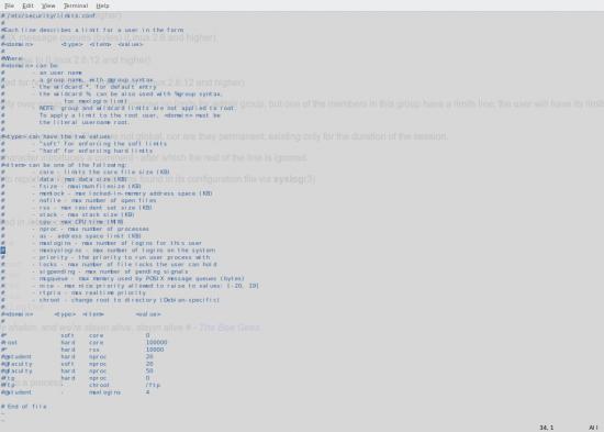 Widok na plik konfiguracyjny usługi Secure Shell
