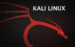Kali Linux, czyli BackTrack 6