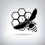 Kippo – czyli honeypot ssh