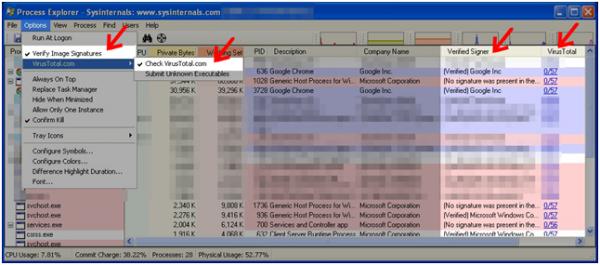 Rys. 5. Weryfikacja sygnatur oraz hashy plików w Process Explorer.