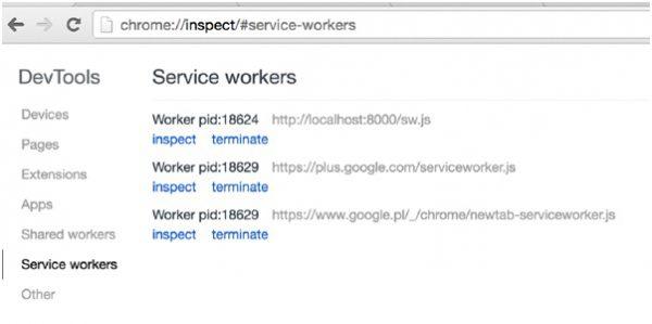 Rysunek 2. Lista Service Workerów.