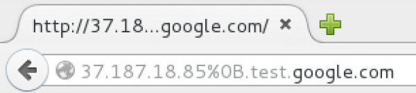 Rys 3. Podkreślenie nazwy domeny google.com w pasku adresu.
