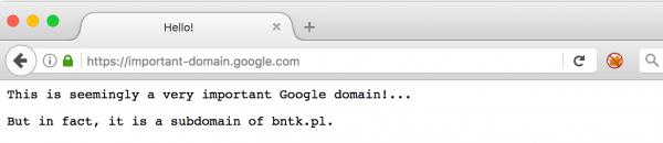 Rys 3. Domain spoofing w Firefoksie