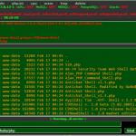 Jak wykrywać backdoory / webshelle w aplikacjach webowych?