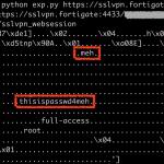 """""""magiczny"""" backdoor w SSL VPN od Fortigate: można zmieniać hasło każdemu użytkownikowi. Można również czytać hasła userów w plaintext. Bonus: zdalny dostęp na root na appliance."""