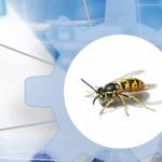 Jak zadbać o bezpieczeństwo API? OWASP API Security Top Ten