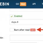 Pastebin dodaje nowe funkcje: spalenie po przeczytaniu oraz ochrona wpisu hasłem